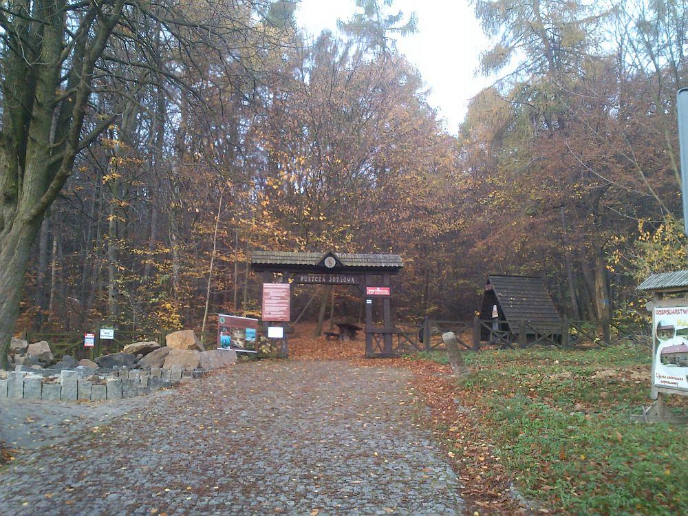 swietokrzyski-park-narodowy1