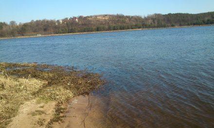 Jezioro Brodzkie