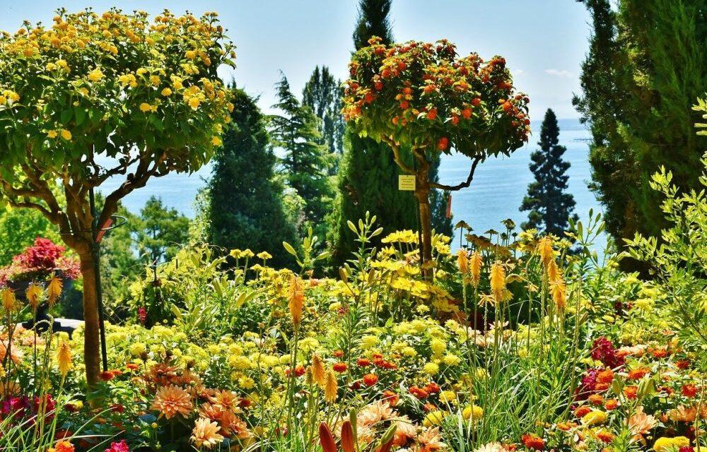 Mainau – Wyspa Kwiatów ciekawostki