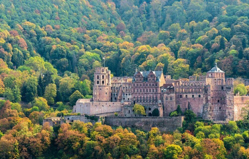 Zamek w Heidelbergu ciekawostki