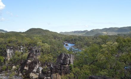 Park Narodowy Chapada dos Veadeiros